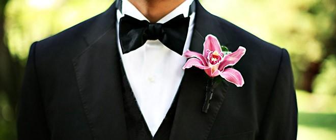 زهرة قبة العريس