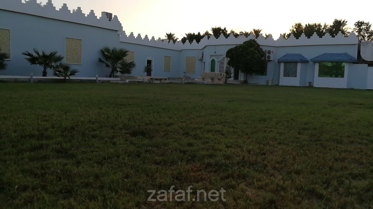 قصر الفرسان
