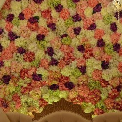 ايليت النخبة للأزهار
