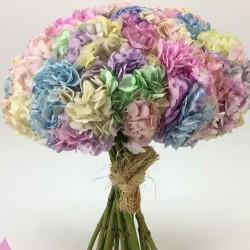 زهرة الربيع للأزهار