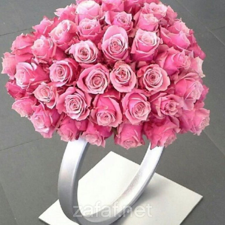 الليالي الوردية