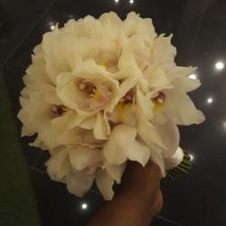 زهور ستايل