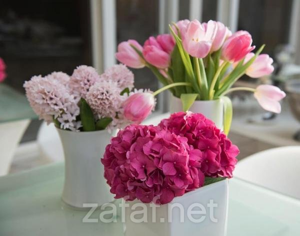 اشراق لتنسيق الزهور