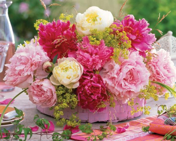 أسرار الزهور